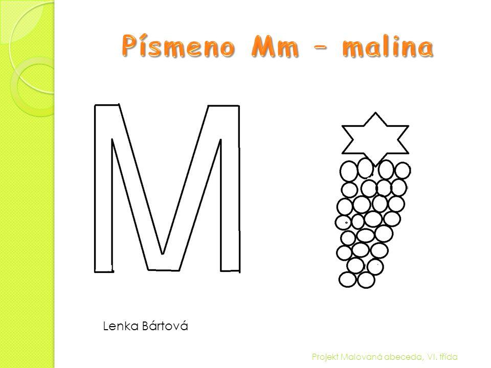 Písmeno Mm – malina Lenka Bártová Projekt Malovaná abeceda, VI. třída