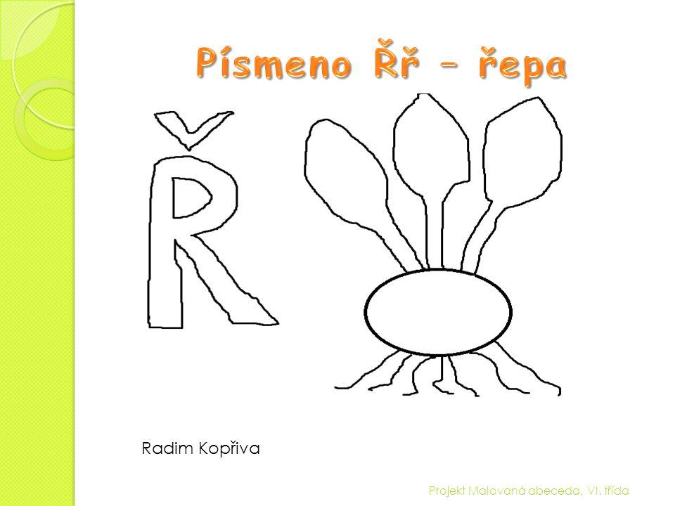 Písmeno Řř – řepa Radim Kopřiva Projekt Malovaná abeceda, VI. třída