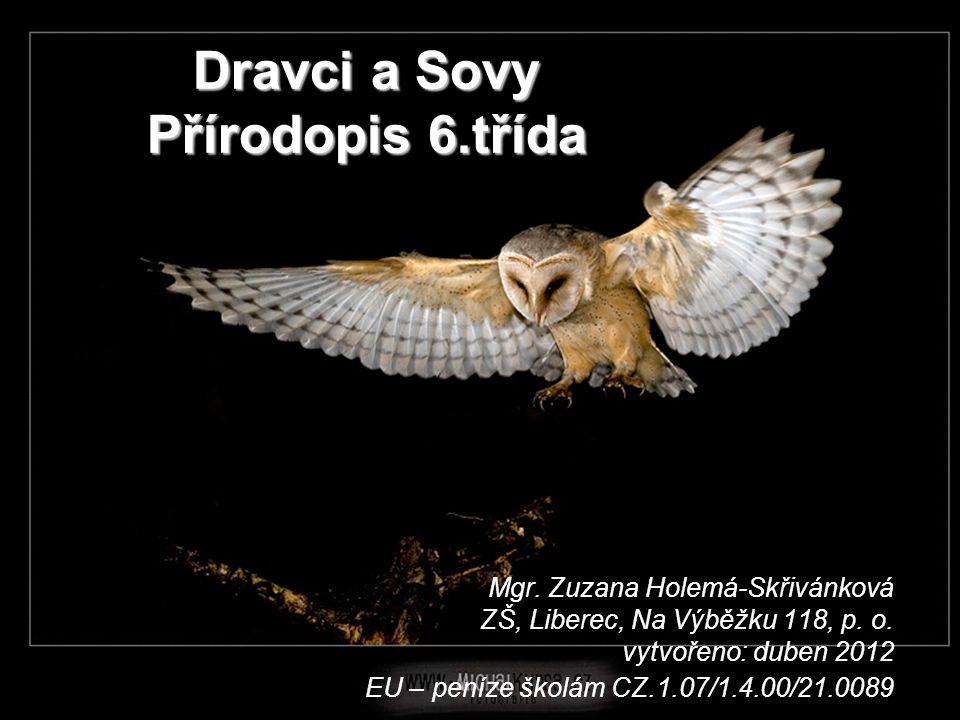 Dravci a Sovy Přírodopis 6.třída