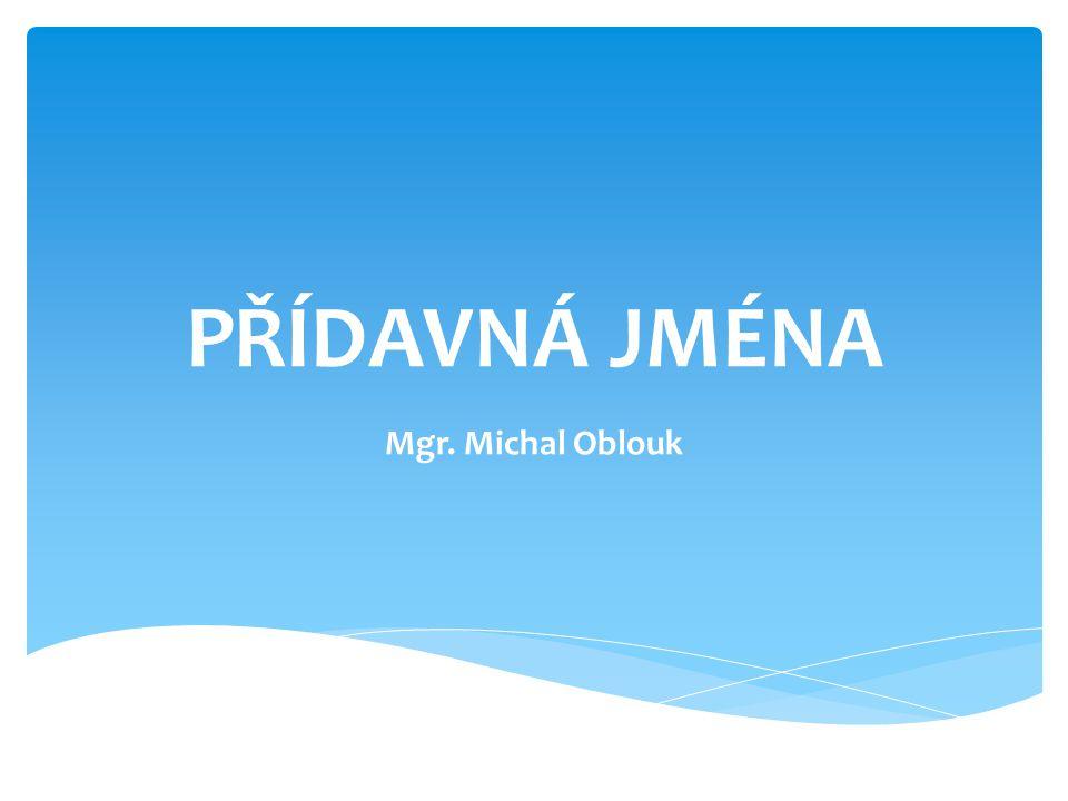 PŘÍDAVNÁ JMÉNA Mgr. Michal Oblouk