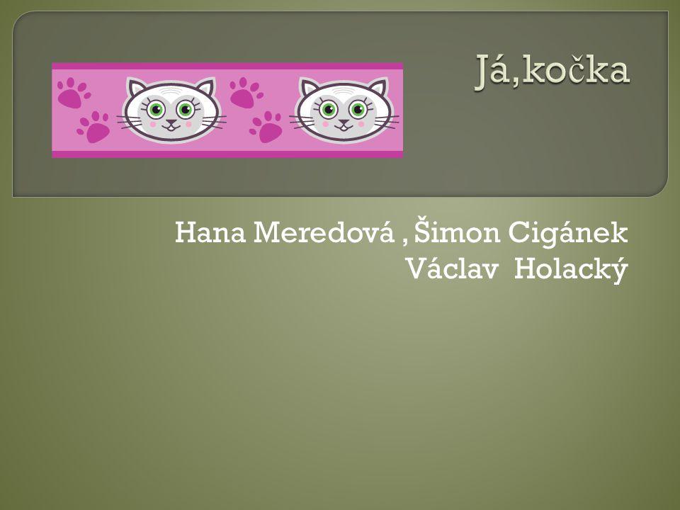 Hana Meredová , Šimon Cigánek Václav Holacký