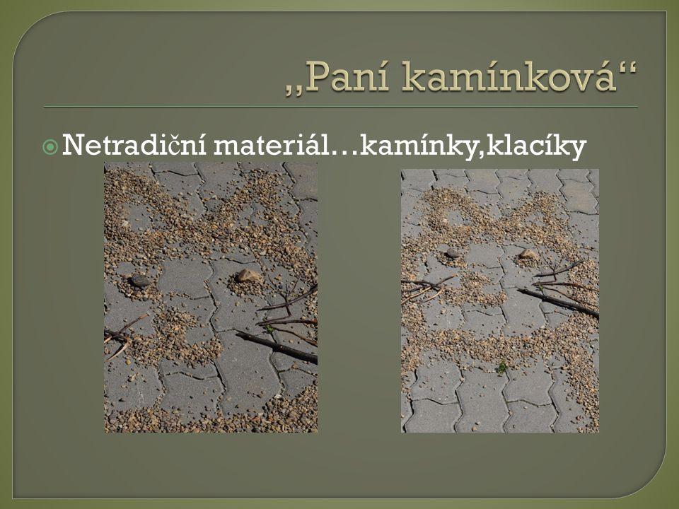 """""""Paní kamínková Netradiční materiál…kamínky,klacíky"""