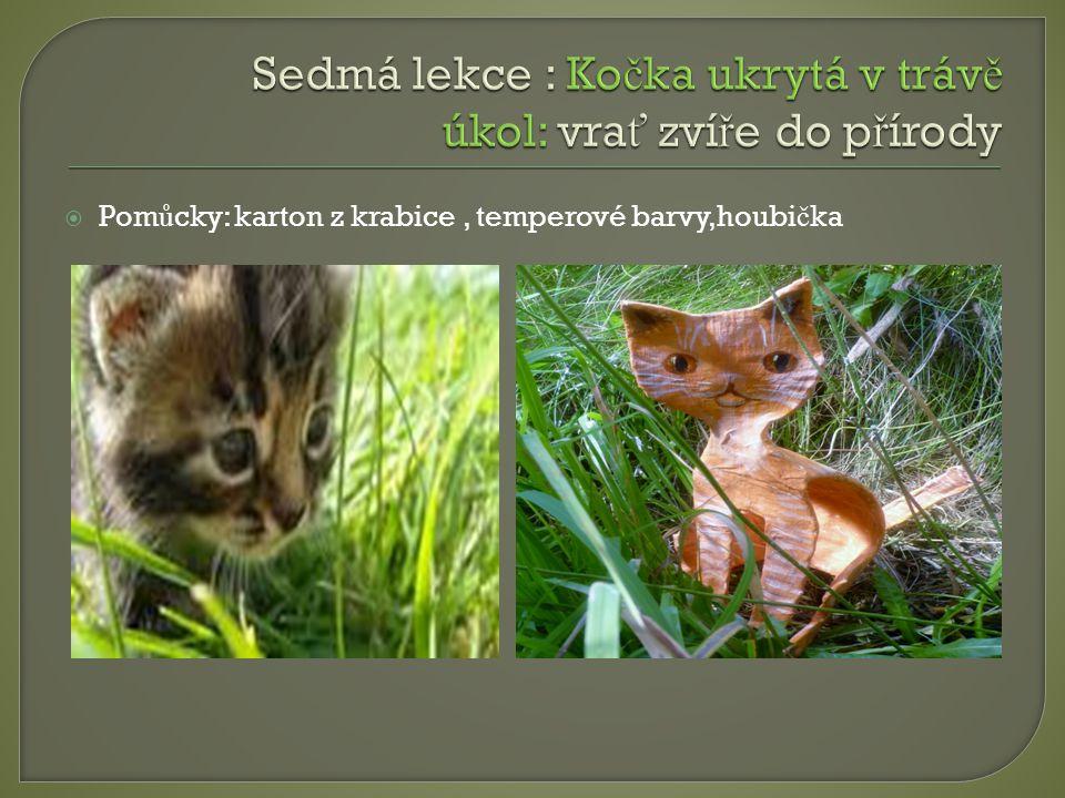Sedmá lekce : Kočka ukrytá v trávě úkol: vrať zvíře do přírody