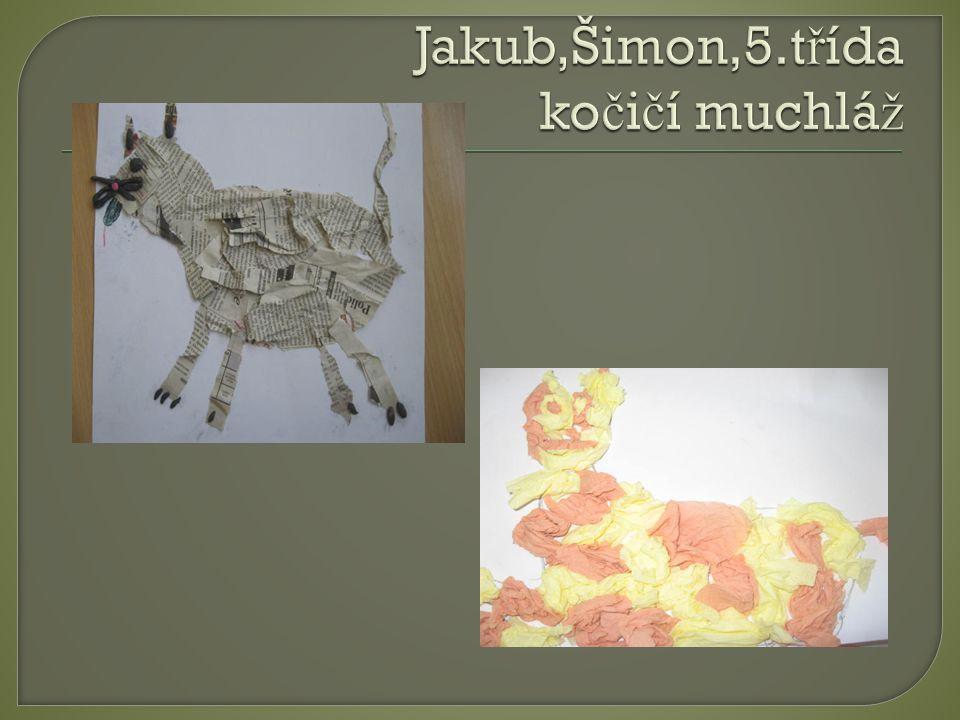 Jakub,Šimon,5.třída kočičí muchláž