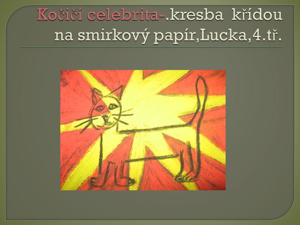 Kočičí celebrita-.kresba křídou na smirkový papír,Lucka,4.tř.