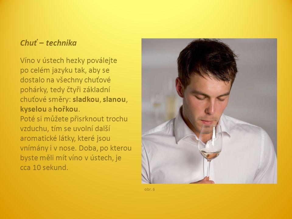 Chuť – technika Víno v ústech hezky poválejte