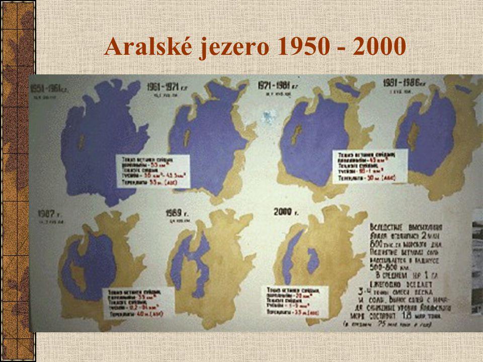 Aralské jezero 1950 - 2000