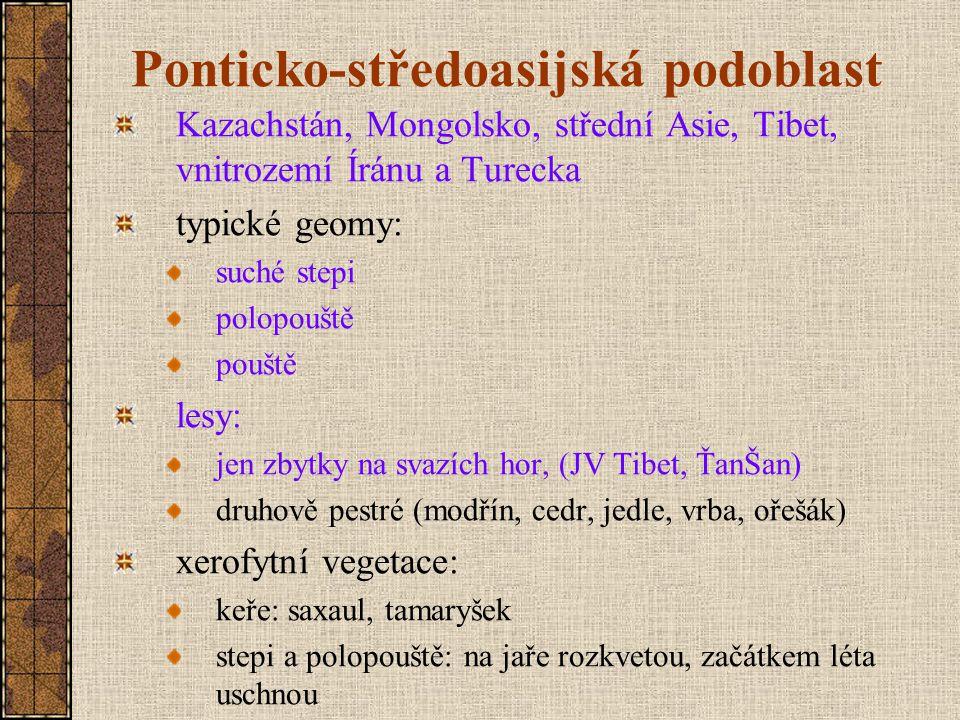 Ponticko-středoasijská podoblast