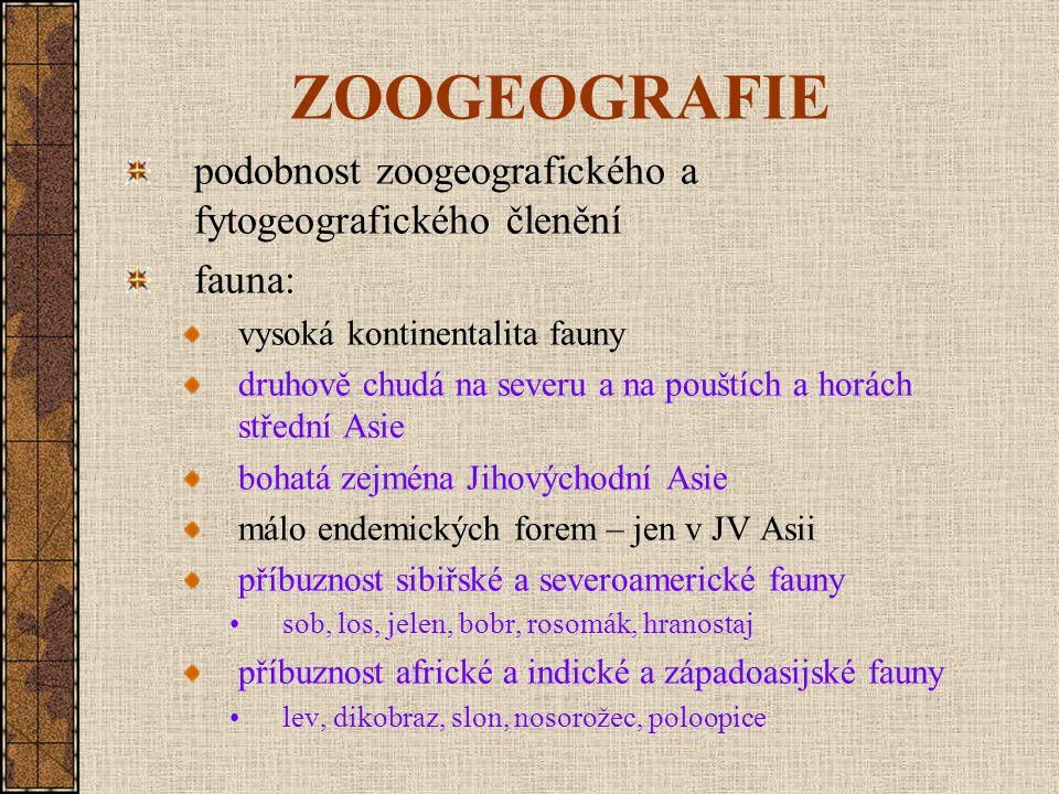 ZOOGEOGRAFIE podobnost zoogeografického a fytogeografického členění