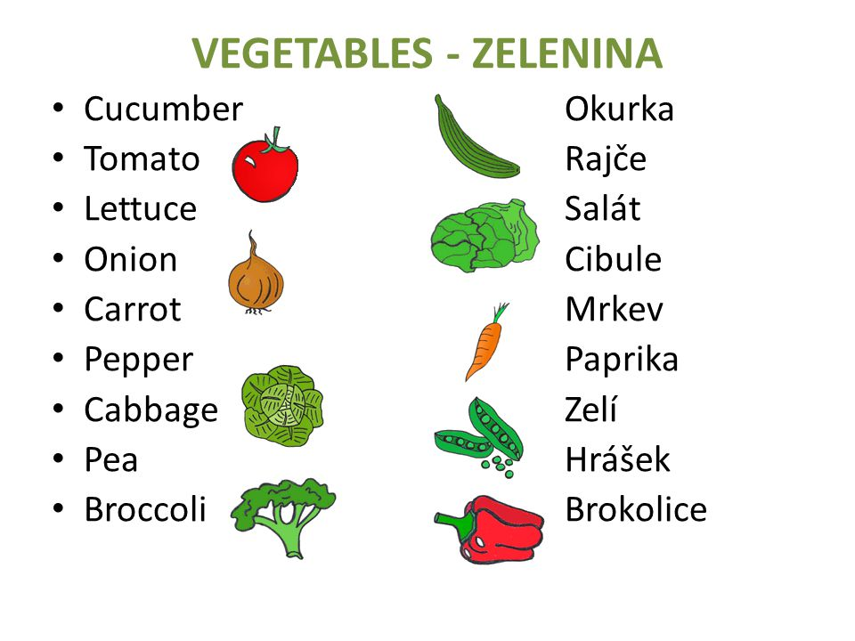 VEGETABLES - ZELENINA Cucumber Okurka Tomato Rajče Lettuce Salát