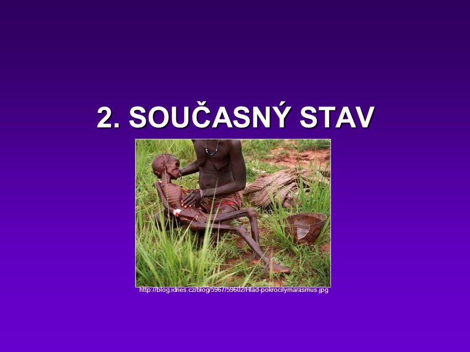 2. SOUČASNÝ STAV http://blog.idnes.cz/blog/5967/59602/Hlad-pokrocilymarasmus.jpg