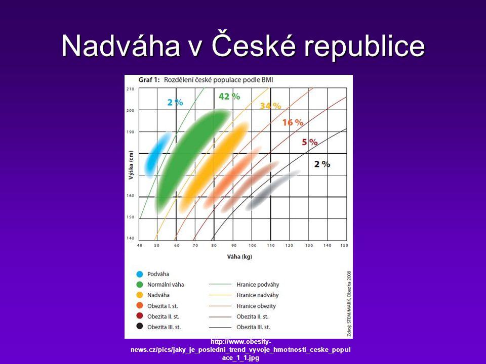 Nadváha v České republice