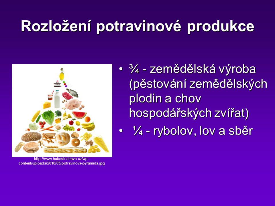 Rozložení potravinové produkce