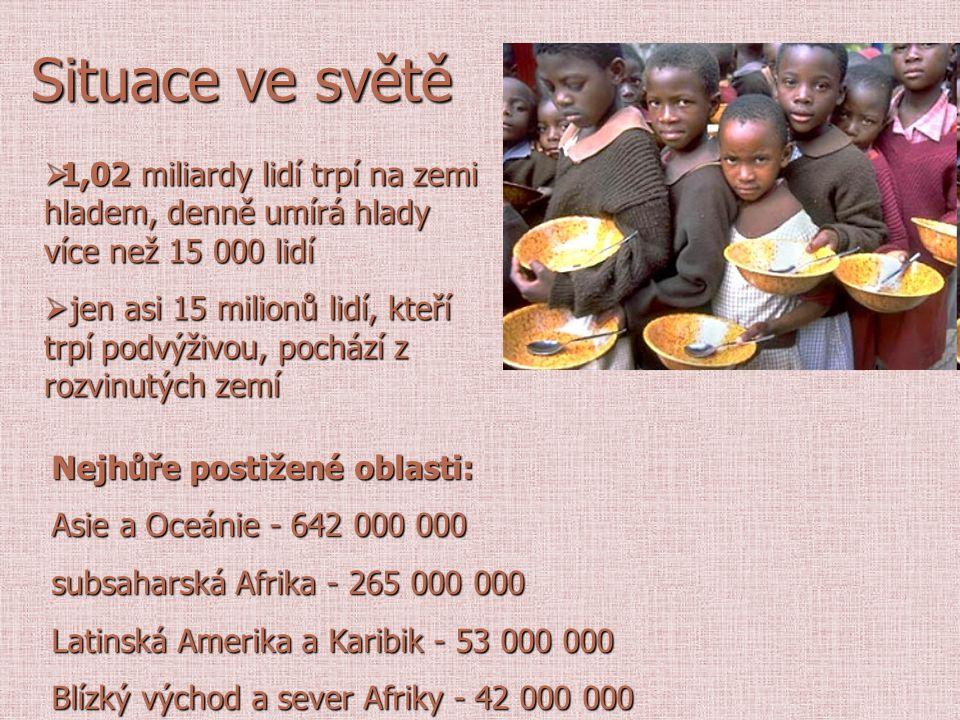 Situace ve světě 1,02 miliardy lidí trpí na zemi hladem, denně umírá hlady více než 15 000 lidí.