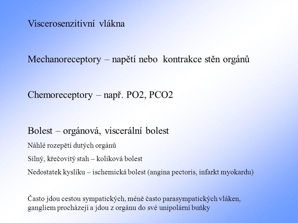 Viscerosenzitivní vlákna
