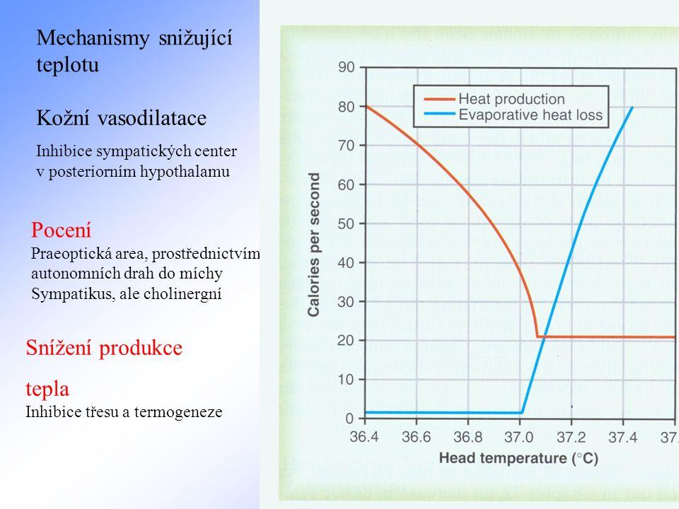 Mechanismy snižující teplotu