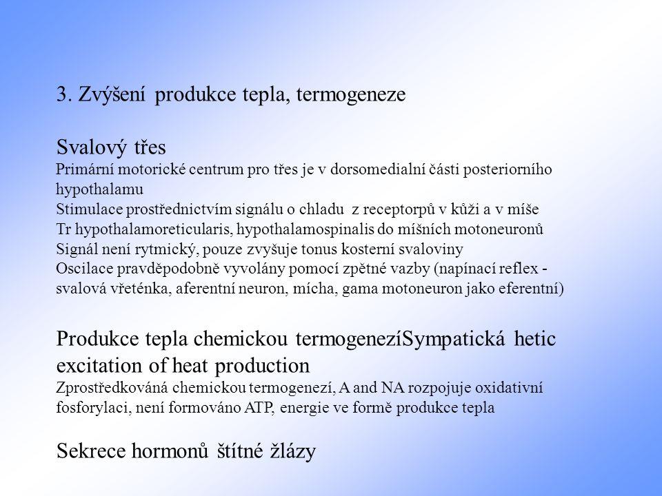 3. Zvýšení produkce tepla, termogeneze Svalový třes