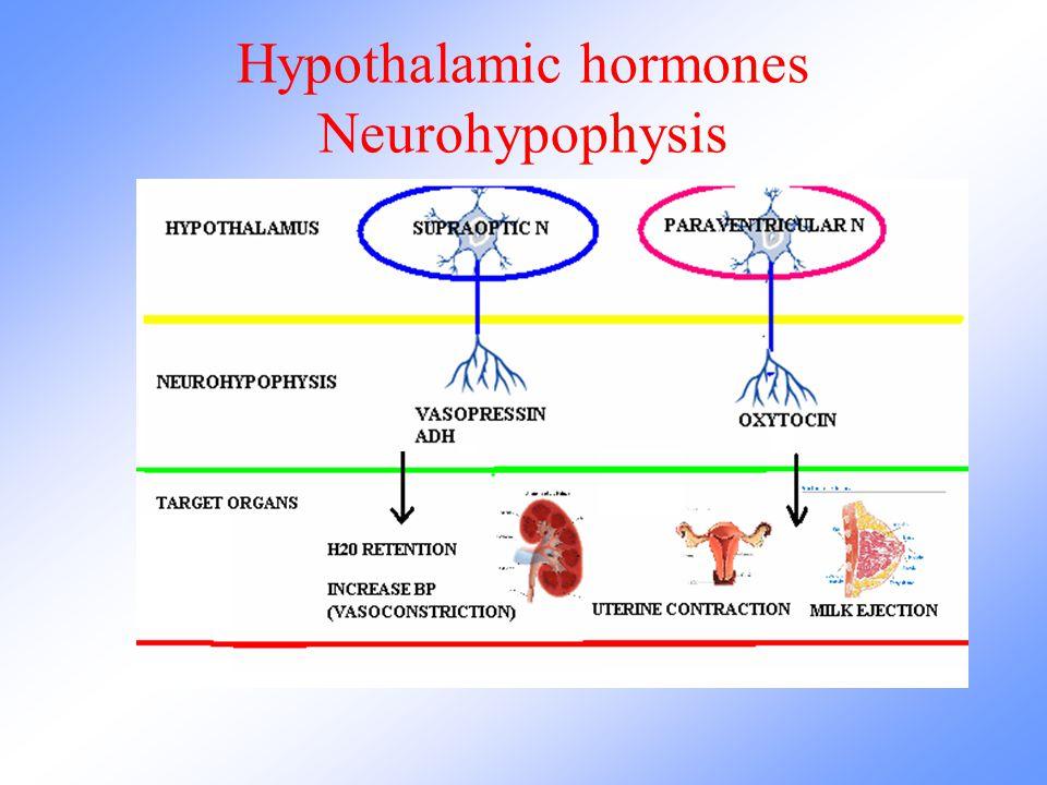 Hypothalamic hormones Neurohypophysis