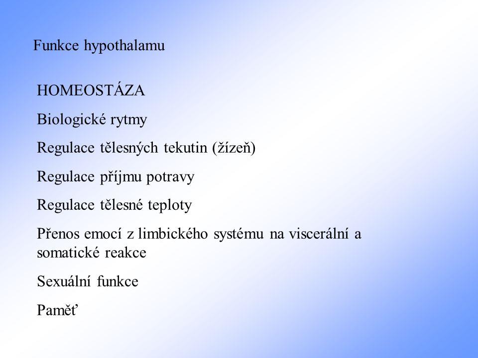 Funkce hypothalamu HOMEOSTÁZA. Biologické rytmy. Regulace tělesných tekutin (žízeň) Regulace příjmu potravy.