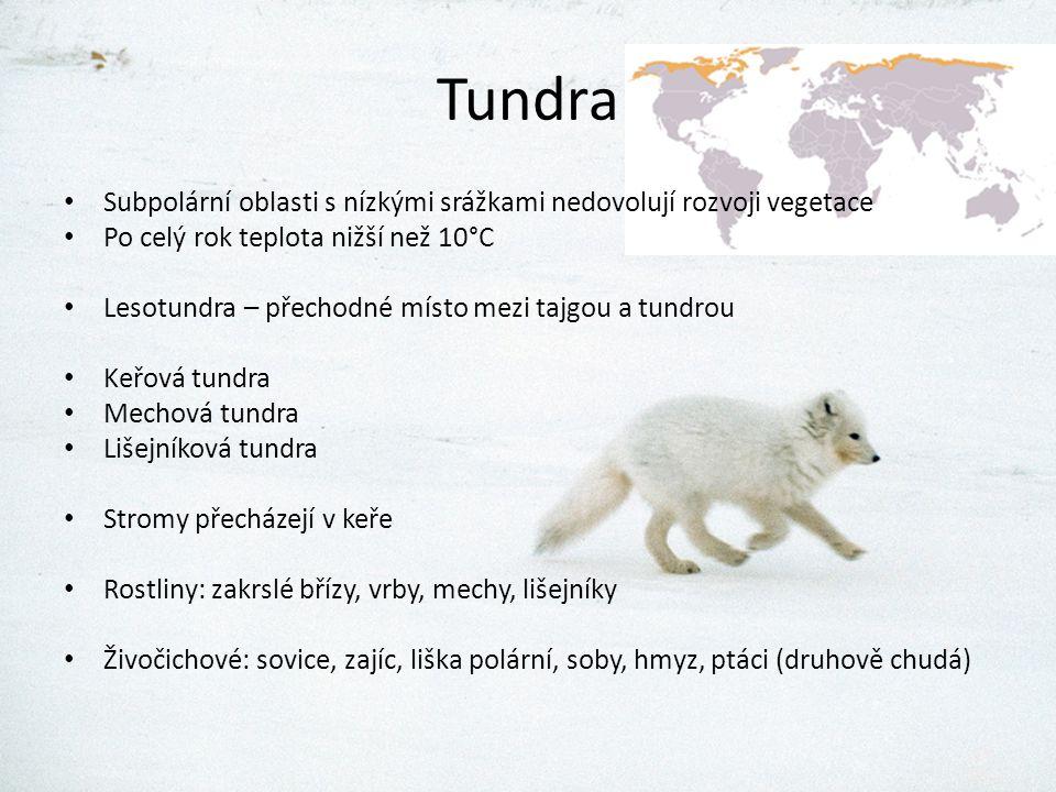 Tundra Subpolární oblasti s nízkými srážkami nedovolují rozvoji vegetace. Po celý rok teplota nižší než 10°C.