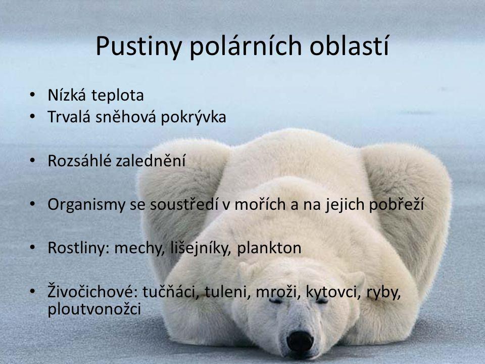 Pustiny polárních oblastí