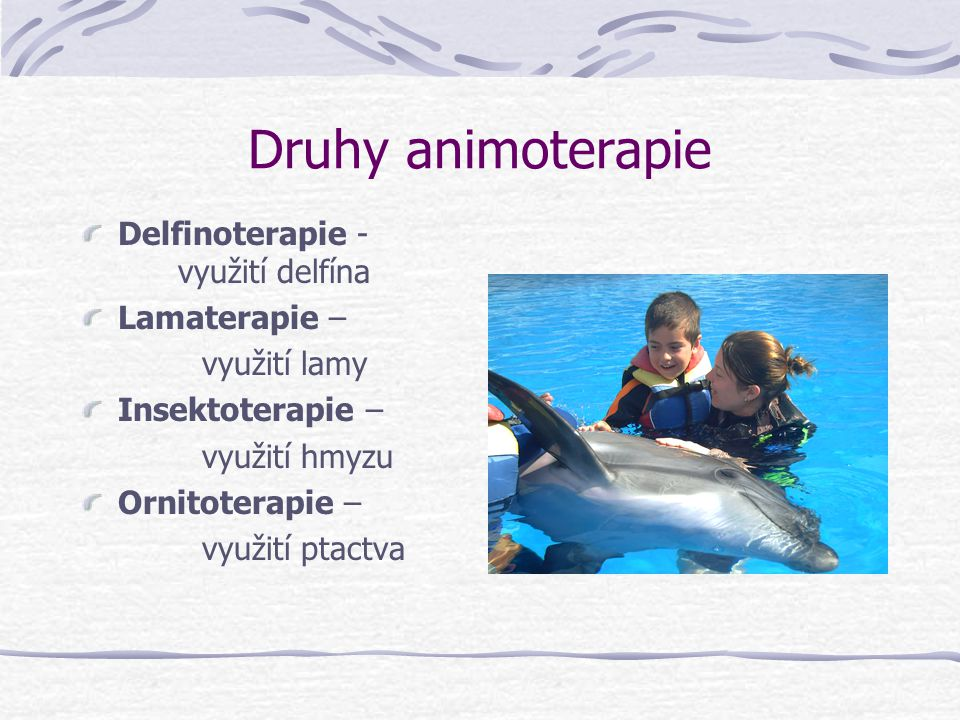 Druhy animoterapie Delfinoterapie - využití delfína Lamaterapie –