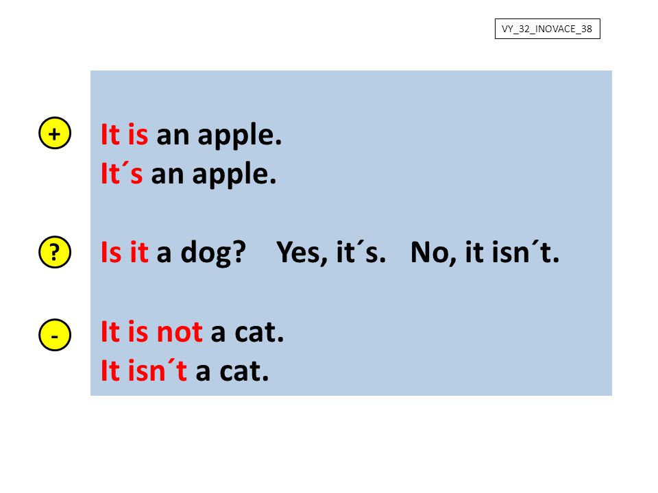 Is it a dog Yes, it´s. No, it isn´t. It is not a cat. It isn´t a cat.