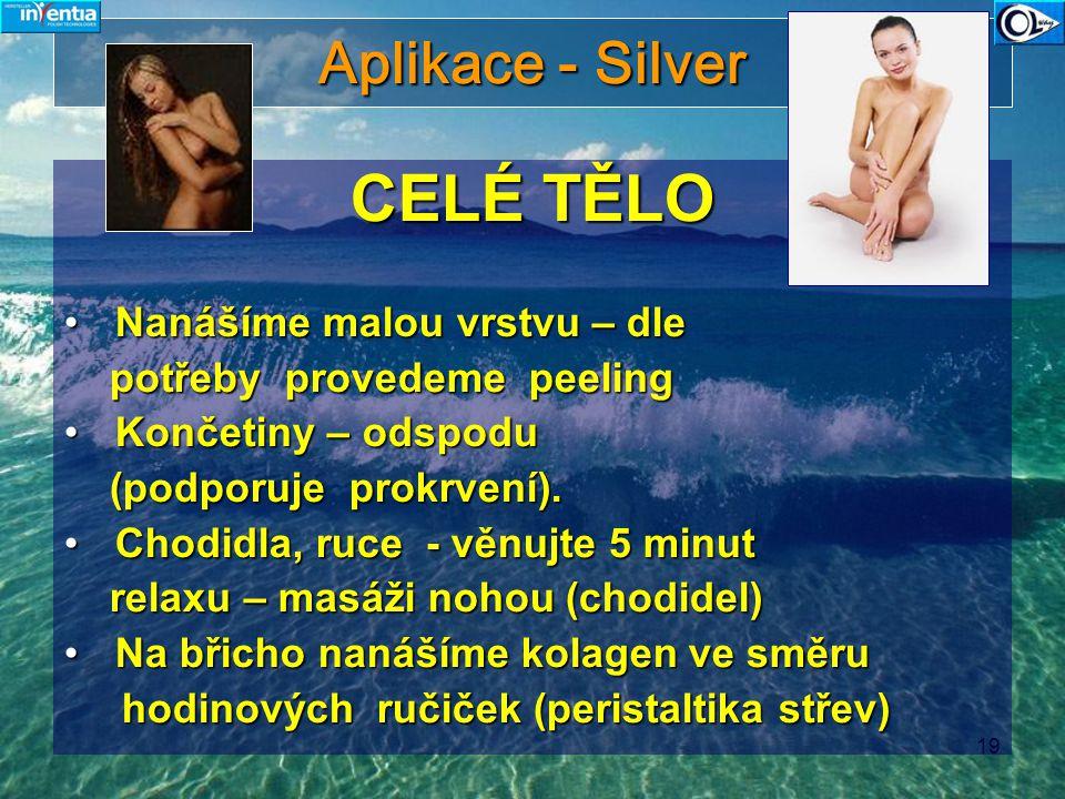 CELÉ TĚLO Aplikace - Silver Nanášíme malou vrstvu – dle