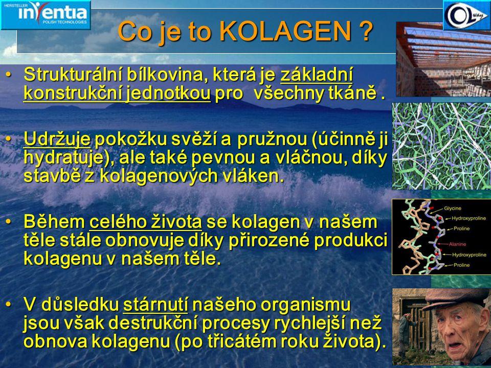 Co je to KOLAGEN Strukturální bílkovina, která je základní konstrukční jednotkou pro všechny tkáně .