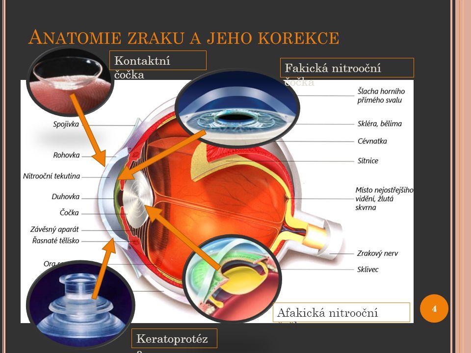 Anatomie zraku a jeho korekce