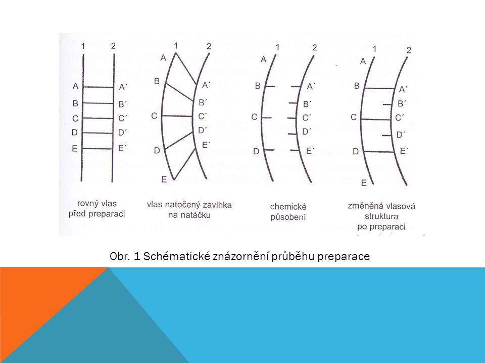 Obr. 1 Schématické znázornění průběhu preparace