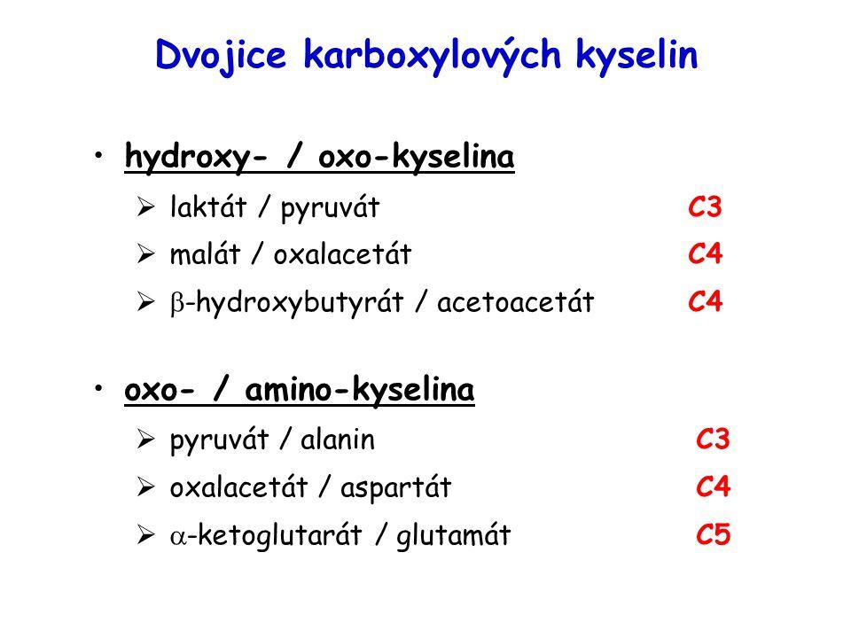 Dvojice karboxylových kyselin