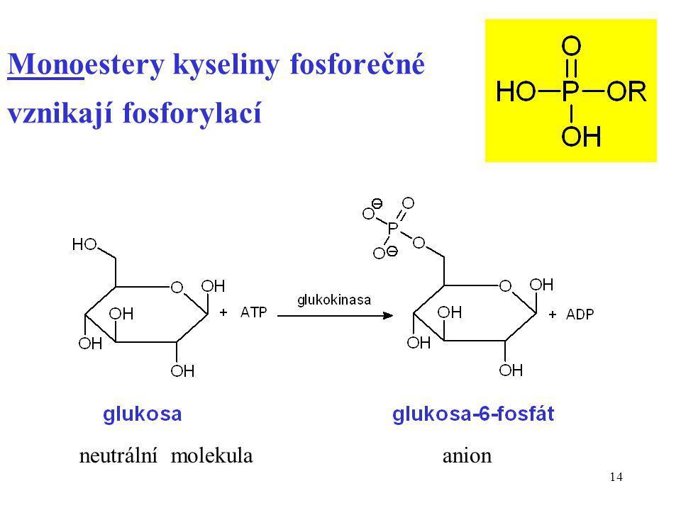 Monoestery kyseliny fosforečné vznikají fosforylací