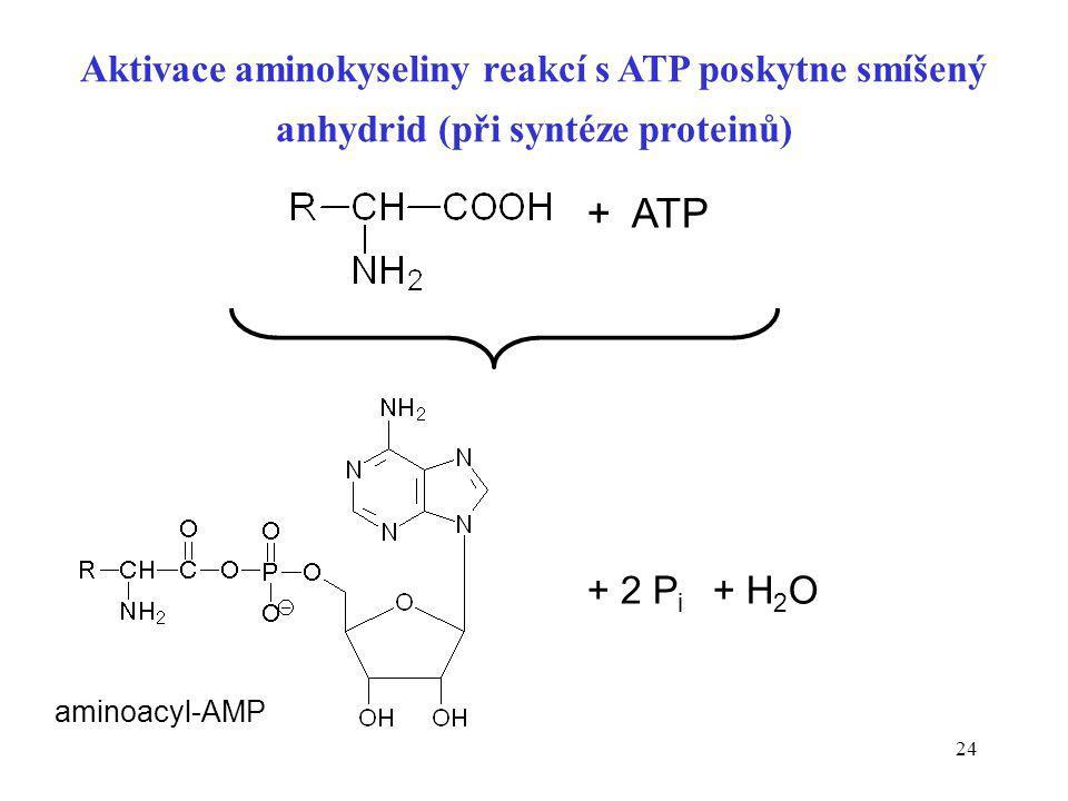 Aktivace aminokyseliny reakcí s ATP poskytne smíšený anhydrid (při syntéze proteinů)