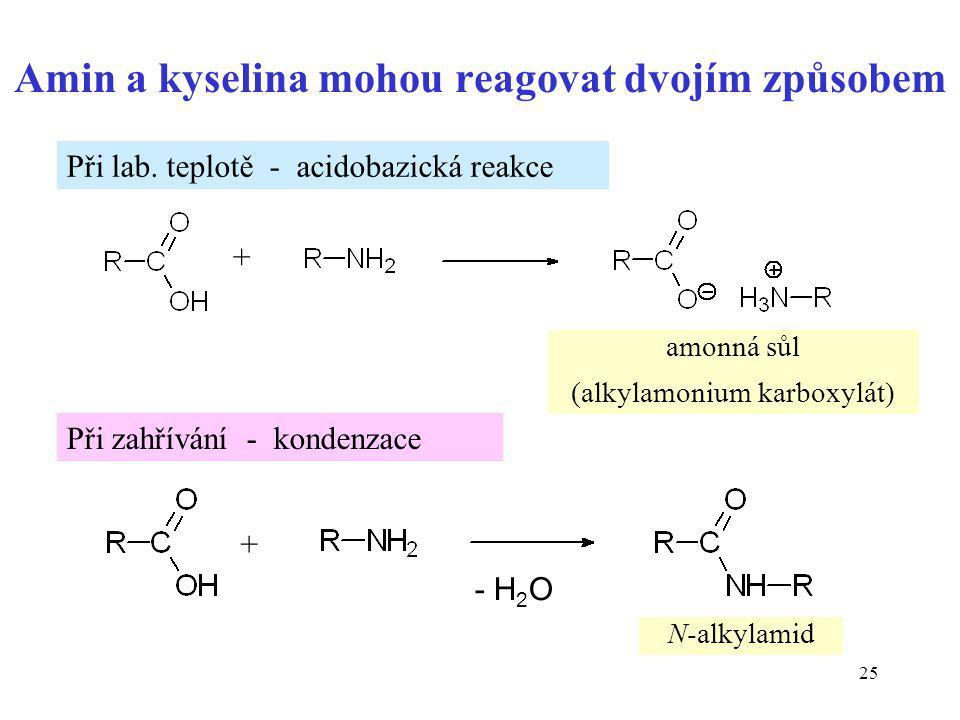 Amin a kyselina mohou reagovat dvojím způsobem