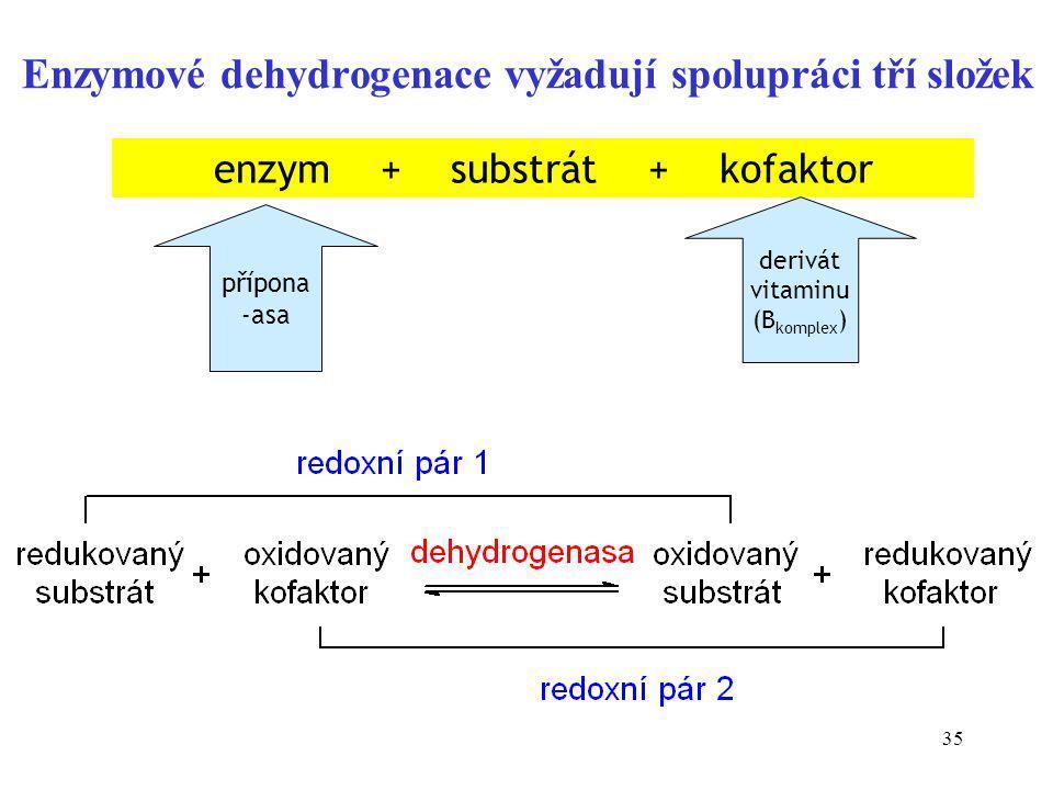 Enzymové dehydrogenace vyžadují spolupráci tří složek