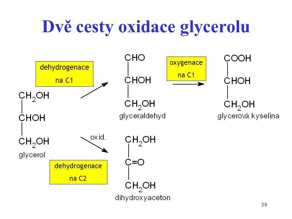 Dvě cesty oxidace glycerolu
