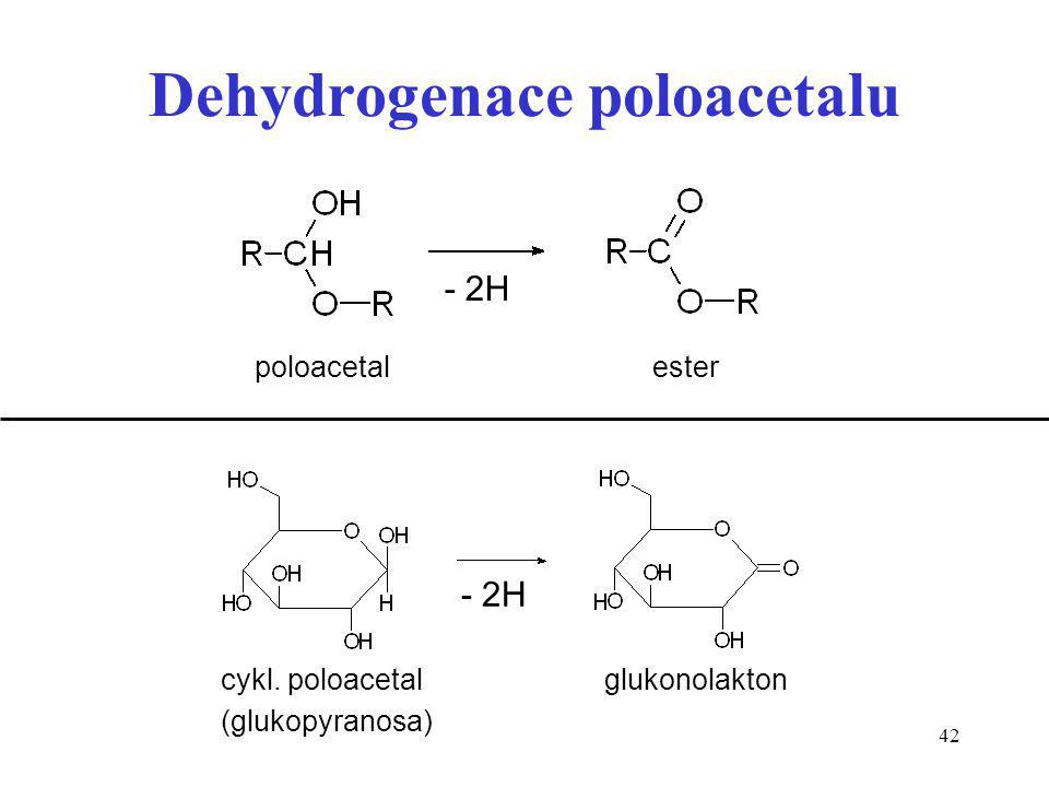 Dehydrogenace poloacetalu