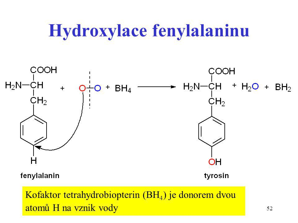 Hydroxylace fenylalaninu