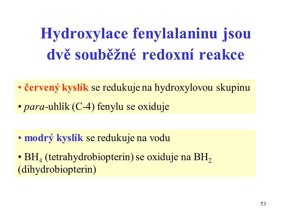 Hydroxylace fenylalaninu jsou dvě souběžné redoxní reakce