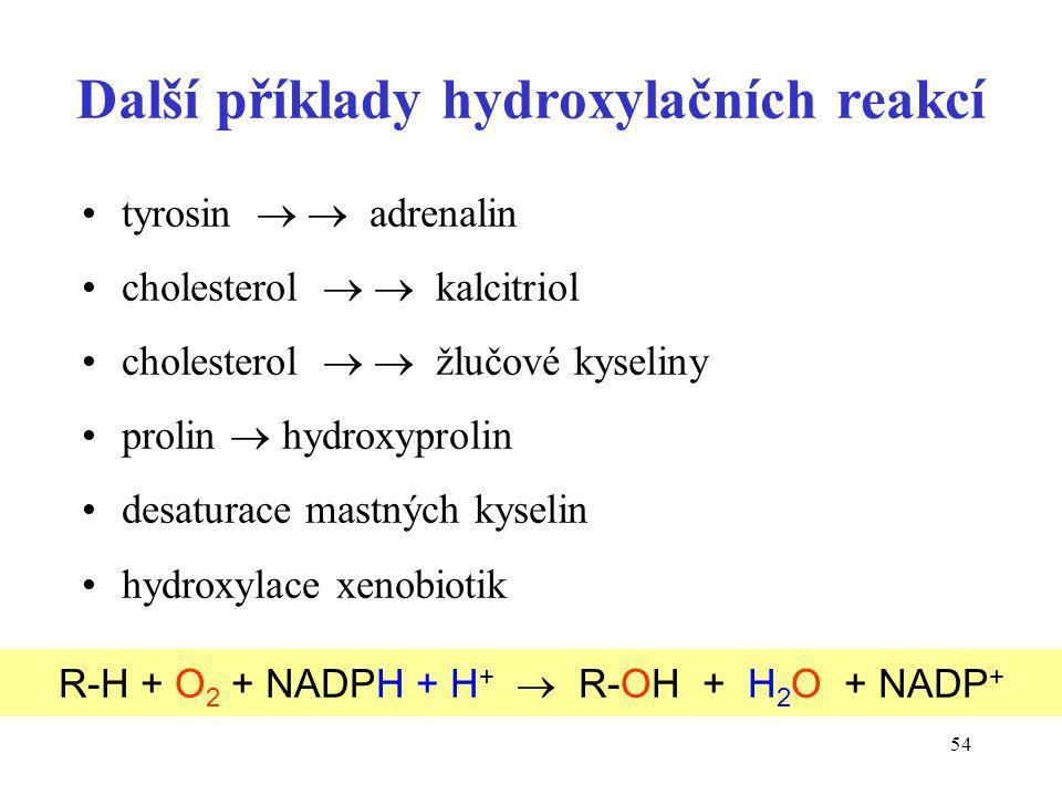 Další příklady hydroxylačních reakcí
