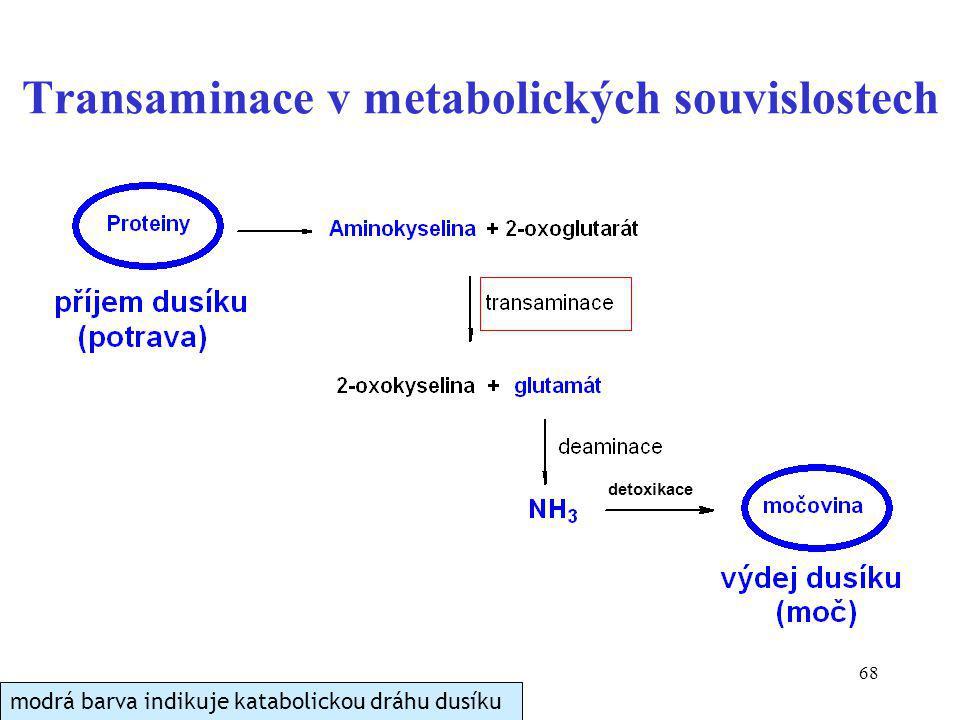Transaminace v metabolických souvislostech