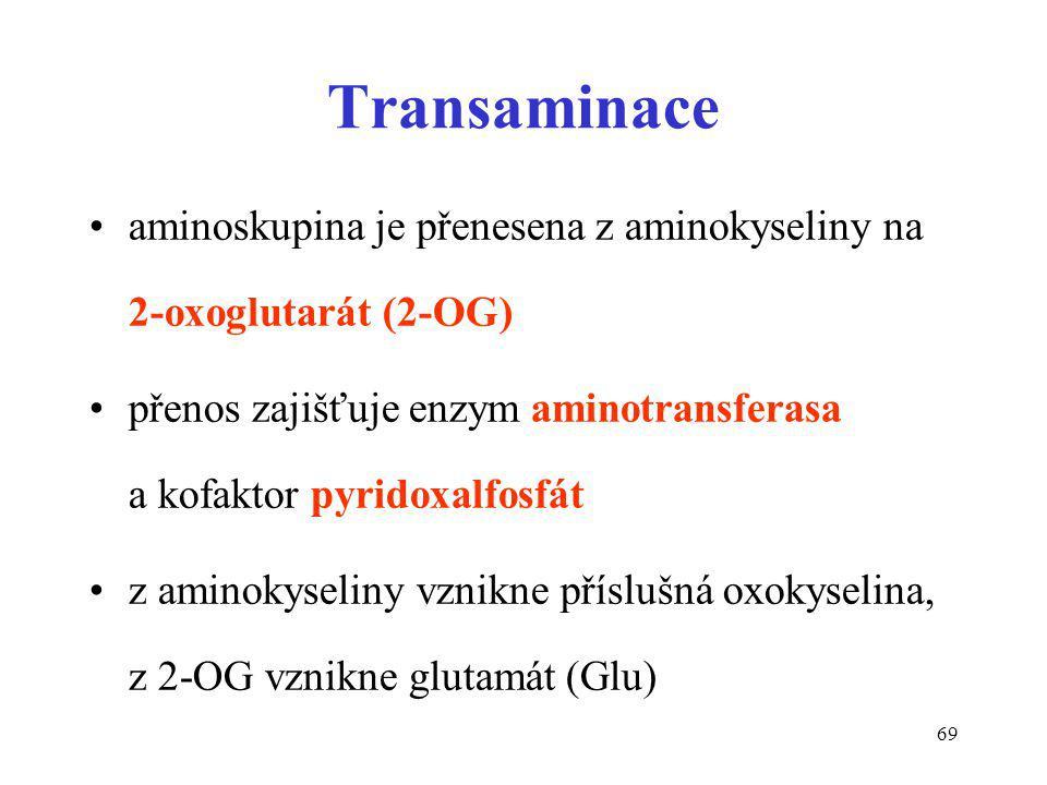 Transaminace aminoskupina je přenesena z aminokyseliny na 2-oxoglutarát (2-OG)