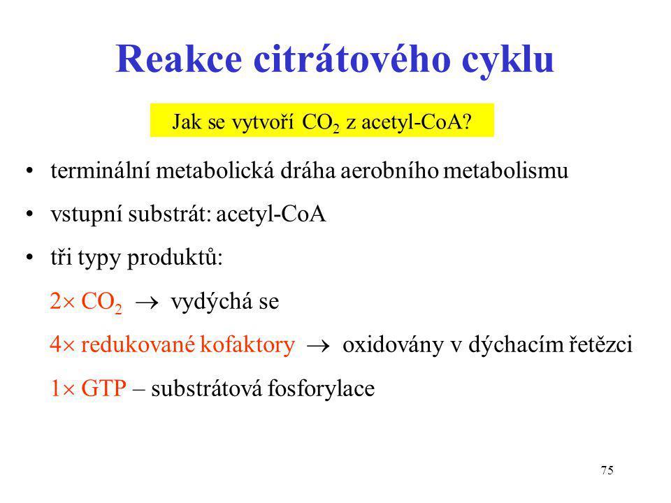 Reakce citrátového cyklu