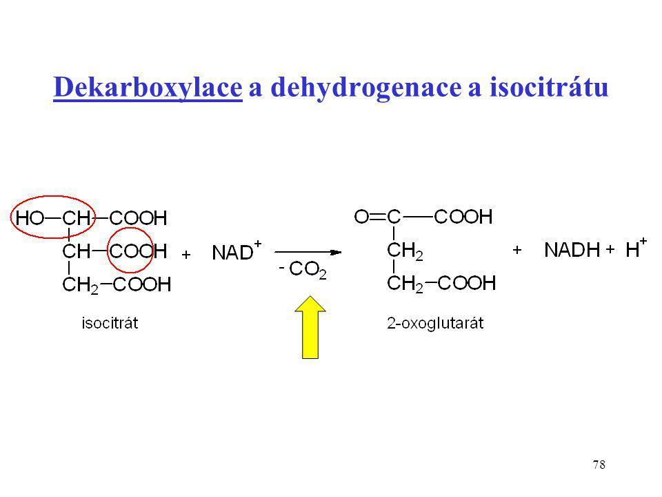 Dekarboxylace a dehydrogenace a isocitrátu