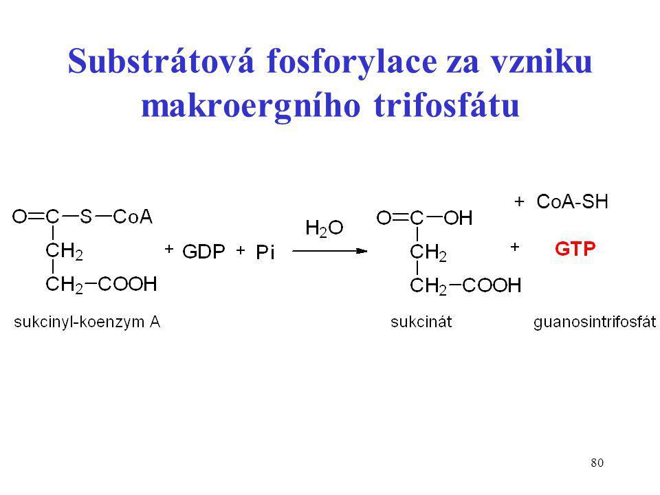 Substrátová fosforylace za vzniku makroergního trifosfátu