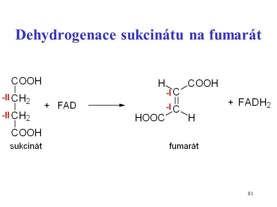 Dehydrogenace sukcinátu na fumarát