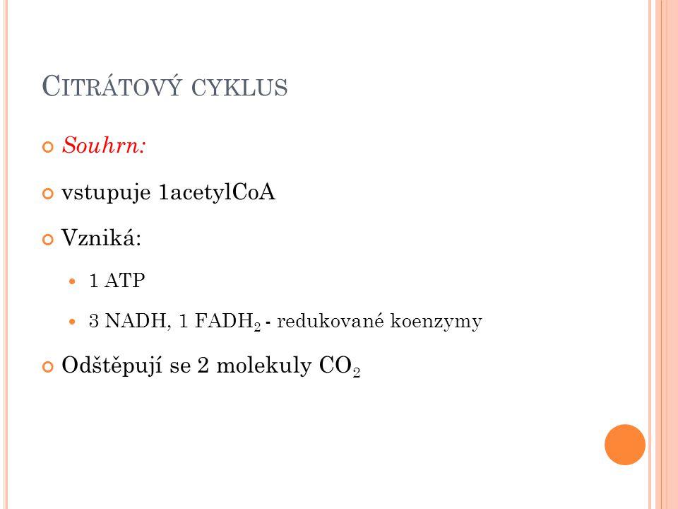 Citrátový cyklus Souhrn: vstupuje 1acetylCoA Vzniká: