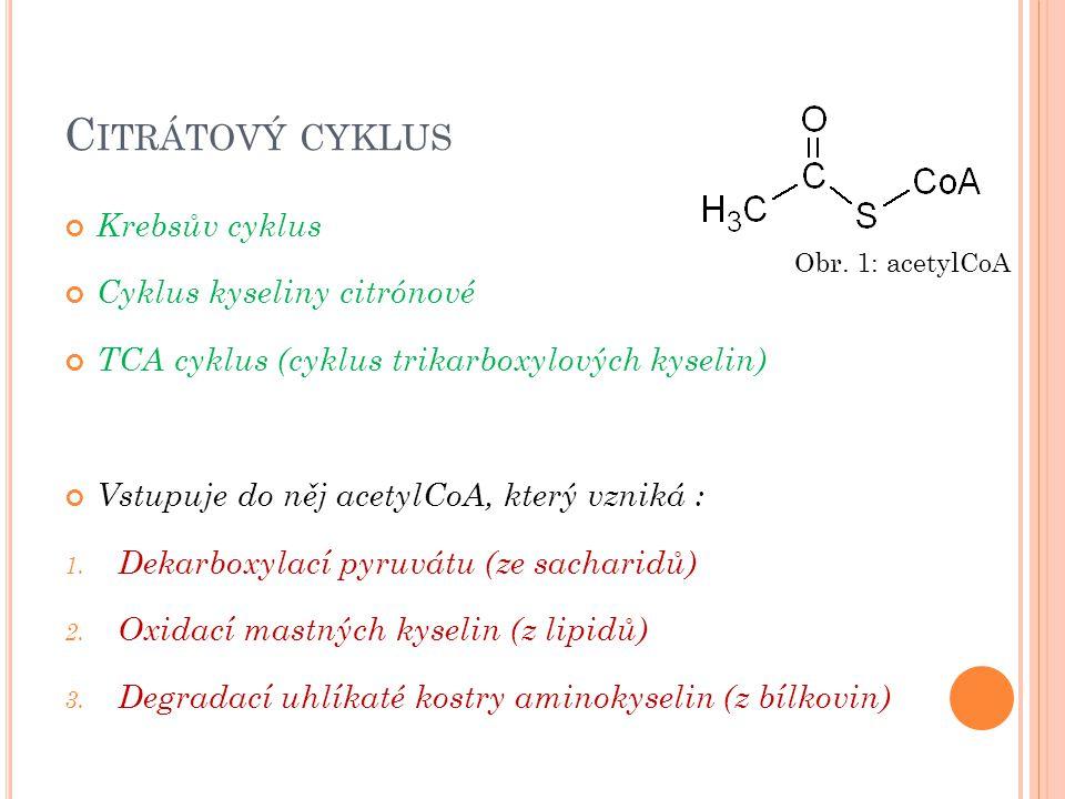 Citrátový cyklus Krebsův cyklus Cyklus kyseliny citrónové