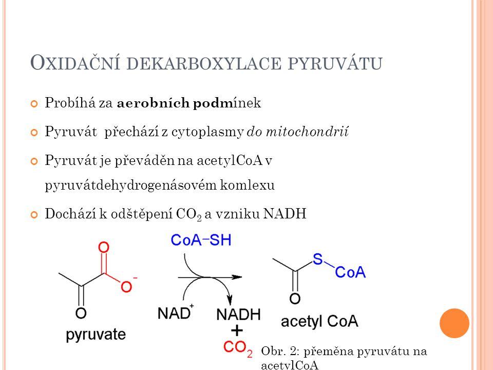 Oxidační dekarboxylace pyruvátu